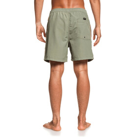 Quiksilver Beach Please Volley 16 Shorts Hombre, four leaf clover